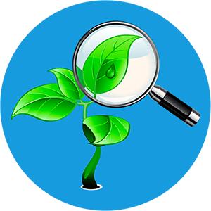 Экологическая экспертиза: сопровождение государственной экспертизы