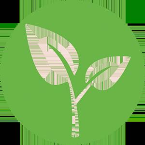 Анализ проб растительного происхождения